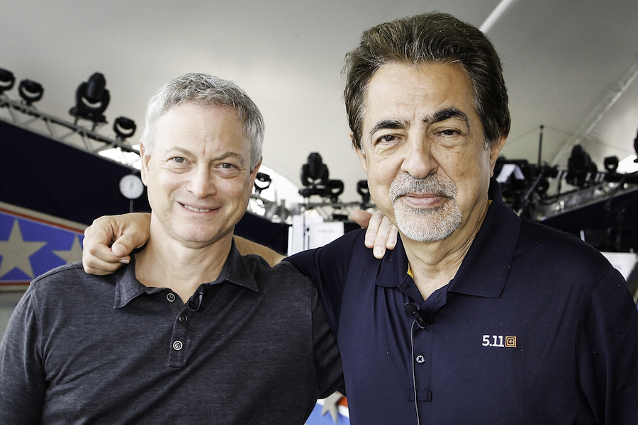Gary Sinise and Joe Mantegna